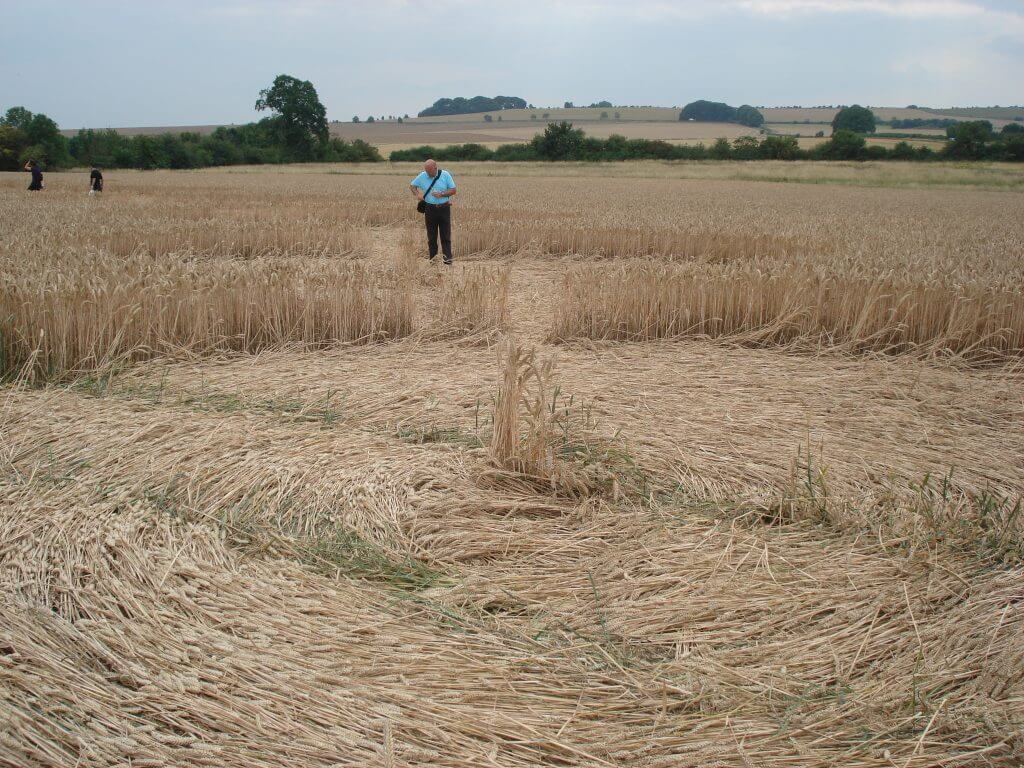 Circle of flattened barley in foreground with man standing behind